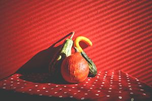 健康美容ダイエットcomのlogo